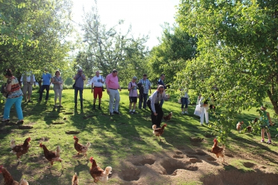 Besuch des Biobauernhofs Krieger